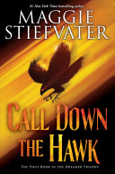 "Image for ""Call Down the Hawk"""