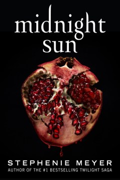 "Image for ""Midnight Sun"""