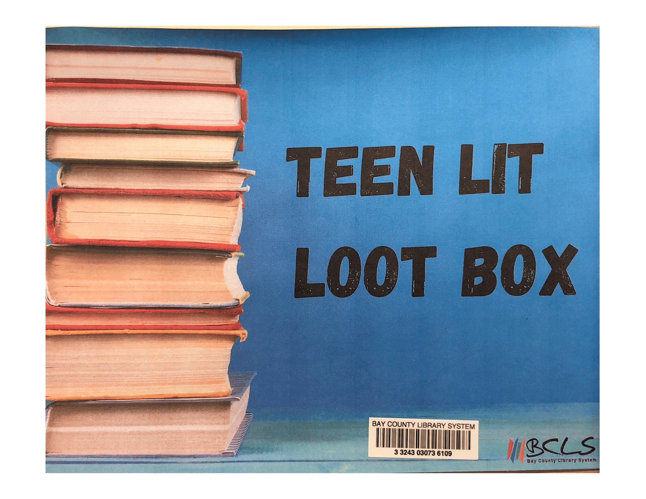"Image for ""Teen LitLoot Box"""