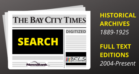 Bay City Times web search graphic